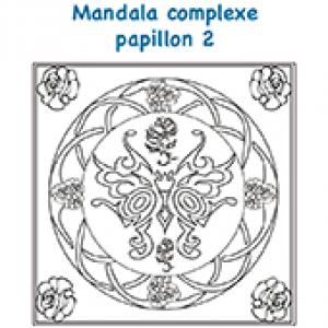 Mandala papillon et fleurs complexe 2