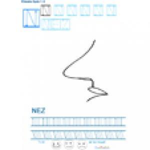 Imprimer la fiche graphisme sur N de NEZ