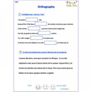 Exercice 1 orthographe CM2
