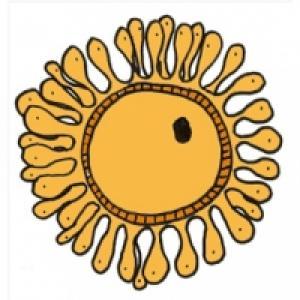 L'ovocyte ou l'ovule