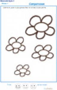 Exercice 6 sur la plus petite et la plus grande fleur PS
