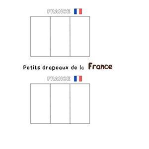 Mini drapeaux de la France
