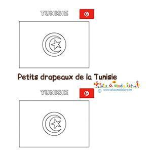 Petits drapeaux Tunisiens