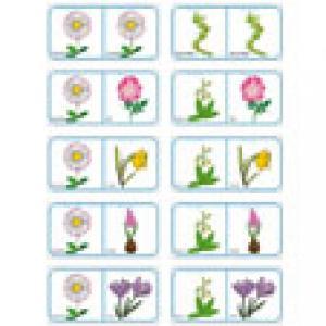 Dominos des fleurs de printemps et d'été - planche 10 à imprimer