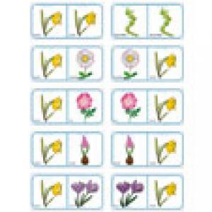 Planche 12 des Dominos sur les fleurs de printemps et d'été