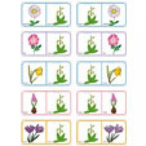 Planche Dominos des fleurs 14