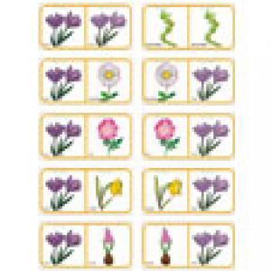 Planche de fleurs pour fabriquer un jeu de dominos