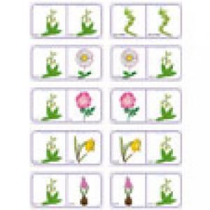 Planche de fleurs jeu de dominos N°16