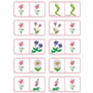 Dominos sur les fleurs - 2