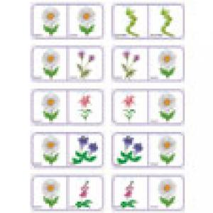 Dominos des fleurs a imprimer - planche 4