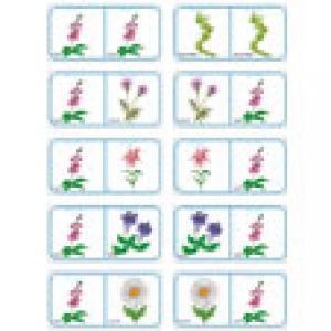 Dominos sur les fleurs Planche 5 à imprimer