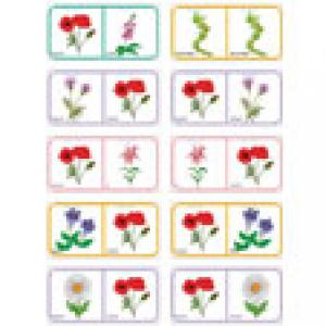 Dominos sur le nom des fleurs -planche 7