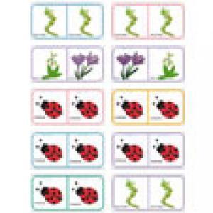 Planche 9 des Dominos sur les fleurs de printemps et d'été