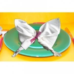 pliage de serviette en papillon
