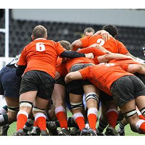 Coupe du monde de Rugby, Rugby à XV
