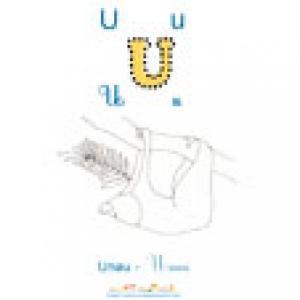 UNAU apprendre et lire le U comme Unau imagier 2