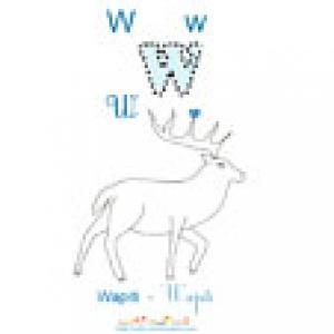 Apprendre et lire le W comme Wapiti