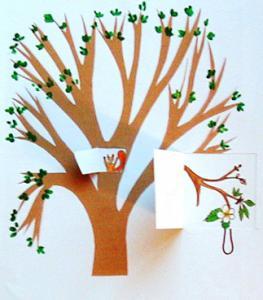 arbre et saisons