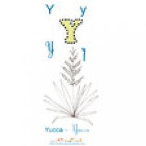 Apprendre et lire le Y comme Yucca