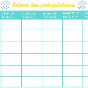Relevé de précipitations pour pluviomètre. Calculez la quantité de pluie tombée au m2.