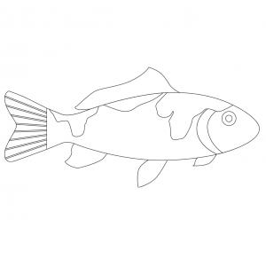 Imprimer le poisson d'avril à découper 1. Un poisson pour le 1er avril.