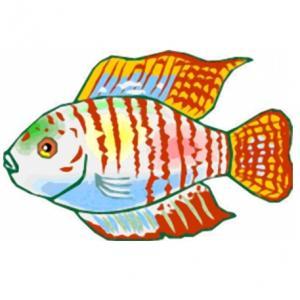 Imprimer le poisson d'avril à découper 13 Un poisson à découper pour le 1er avril