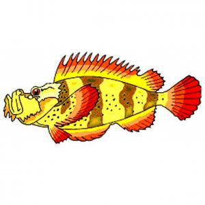 Imprimer le poisson d'avril à découper 7 Un poisson à découper pour le 1er avril