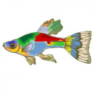 Imprimer le poisson d'avril à découper 8 Un poisson à découper pour le 1er avril
