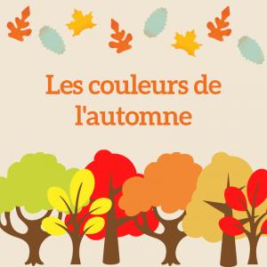 Un jeu à imprimer pour retrrouver le nom des couleurs de l'automne. A votre enfant de regarder l'arbre d'automne et d'en trouver toutes les couleurs !