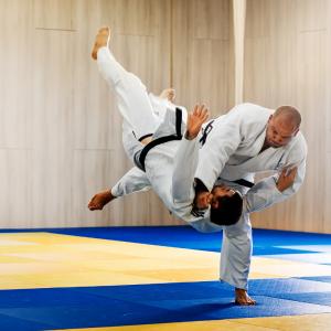 judo - mot du glossaire Tête à modeler. Définition et activités associées au mot judo.