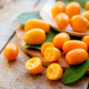 kumquat - mot du glossaire Tête à modeler. Définition et activités associées au mot kumquat.