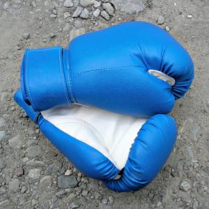 La boxe est inscrite au programme des Grands Jeux depuis 1920. C'est un sport de combat complet. Retrouvez des infos sur la Boxe ainsi que la liste de toutes les épreuves en compétition aux Grands Jeux d'été.