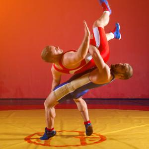 La lutte est un sport qui fait partie des disciplines présentes aux Grands Jeux d'été. Retrouvez des infos sur le sport et la liste des épreuves.    Deux disciplines sont inscrites la lutt...