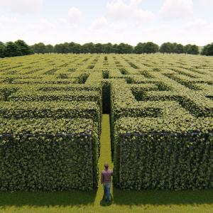 labyrinthe - mot du glossaire Tête à modeler. Définition et activités associées au mot labyrinthe.