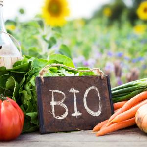 L'Agriculture Biologique c'est d'abord une façon de penser l'agriculture comme un mode production de se rapprocher au maximum des conditions naturelles de vie des plantes et de vie des animaux. L'Agriculture Biologique est une agriculture qui respe