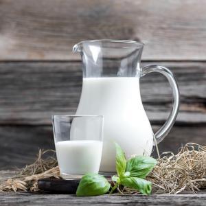 lait - mot du glossaire Tête à modeler. Définition et activités associées au mot lait.