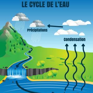 Le cycle naturel de l'eau. L'eau circule sur la terre en suivant un cycle de transformation en 3 grandes étapes : l'évaporation, condensation et les précipitations. Un article pour comprendre comment l'eau se renouvelle pe