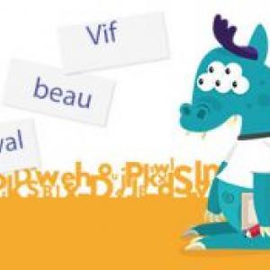 francetv éducation propose ce jeu en ligne qui permettra à votre enfant de conjuguer les adjectifs au pluriel