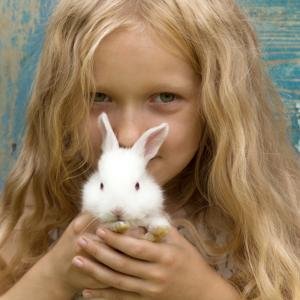Le lapin nain est un compagnon idéal pour l'enfant. Le lapin nain : Le compagnon idéal pour l'enfant. Présentation du lapin nain, son alimentation, ses soins et ses races.