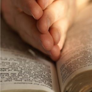 Voici un texte populaire et récité depuis le moyen-âge tous les 25 novembre à l'occasion de la Sainte Catherine. C'est un poème ou une prière que les demoiselles font pour trouver un mari. Une idée de texte à adapter pour écrire sur une carte de Ste Cathe