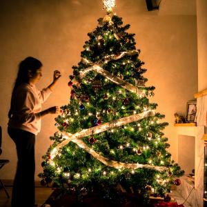 Les origines du sapin de Noël