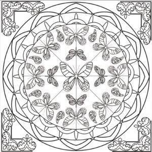 Dessin de mandala complexe autour des papillons : une ronde de papillons est organisé en cercles. Le mandala est incrusté dans un carré.
