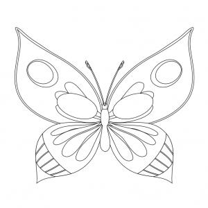 Imprimer le coloriage d'un masque de papillon. Un masque pour le carnaval