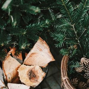 Des solutions pour savoir où jeter son sapin de Noël, infos, conseils