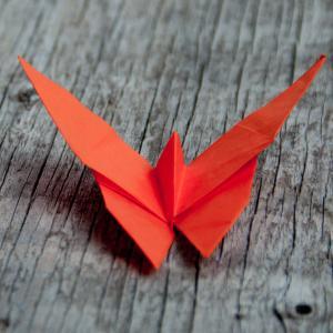 Le pliage de ce papillon en origami est simple et rapide à réaliser. Ces petits papillons en papier seront parfaits pour le...
