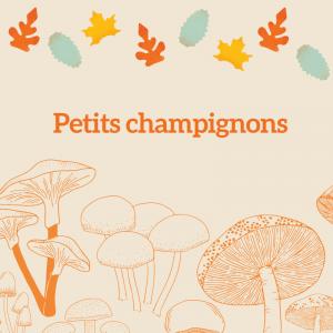 Coloriage de petits champignons variés poussant dans les prés et les sous-bois en automne. Une activité de coloriage sur les champigons d'automne.