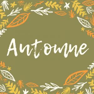 Une poésie sur l'automne de Raymon Radiguet, la poésie imprimée peut être illustrée par l'enfant et collée dans un cahier de poésie.