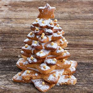 Toutes nos idées de recettes pour la cuisine de Noël et notamment des idées pour un dessert de Noël réussi.