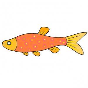 """Un modèle de poisson orange à imprimer pour que votre enfant puisse s'amuser à faire des farces le jour des farces """" le 1er avril"""". Un poisson orange long."""