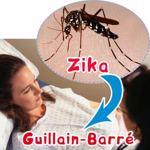 Zika responsable de Guillain-Barré